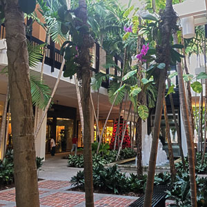bal-harbour-mall